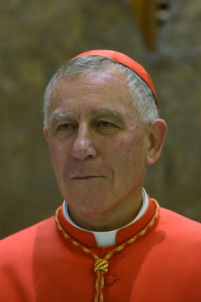 Cardinal John Dew. Photo: AFP / Tiziana Fabi