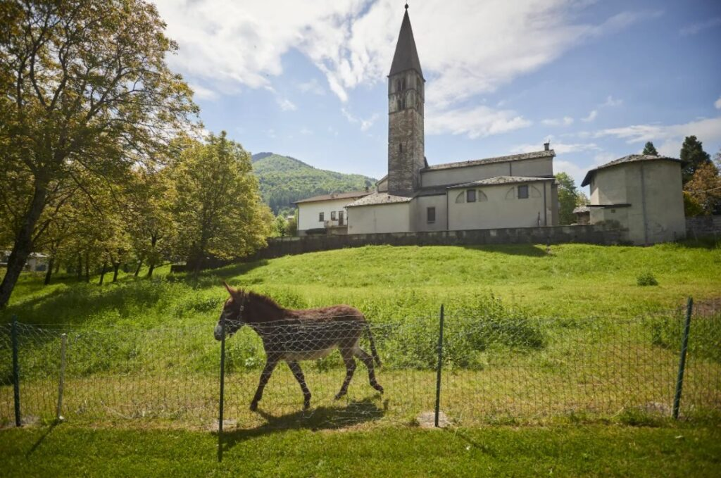 """Coletti, the former bishop of Como, lives in a house adjoining a 12th-century church, with a garden and two donkeys. He is not scheduled to testify at the Vatican trial, with his doctor citing """"cognitive decay."""" (Chiara Goia for The Washington Post)"""