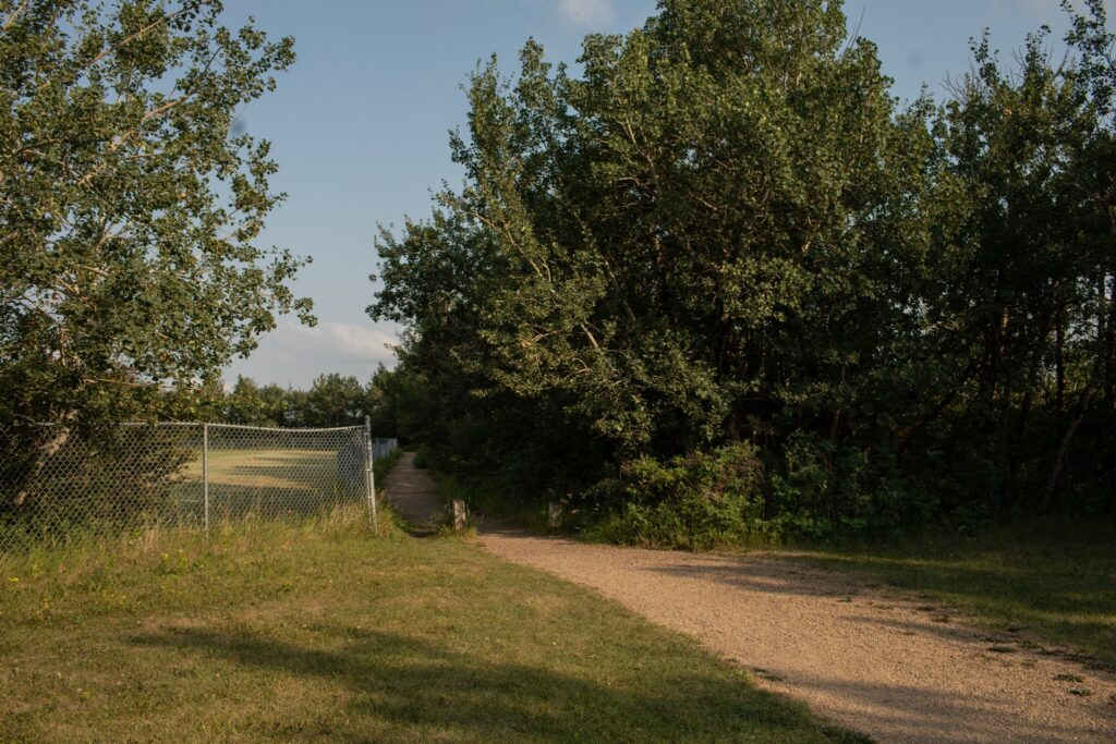 An area near a site in Edmonton that may have unmarked graves of the Papaschase Cree people. Amber Bracken for The New York Times